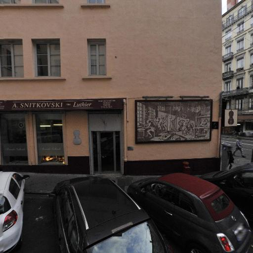 Snitkovski Alexandre - Luthier SARL - Luthier - Lyon