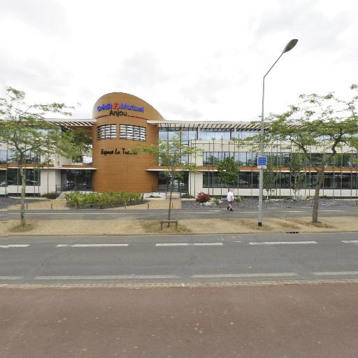 Angers Natation Course - Club de sport - Angers