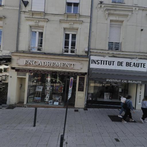 Les Vertebres Cerebrales - Production et réalisation audiovisuelle - Angers