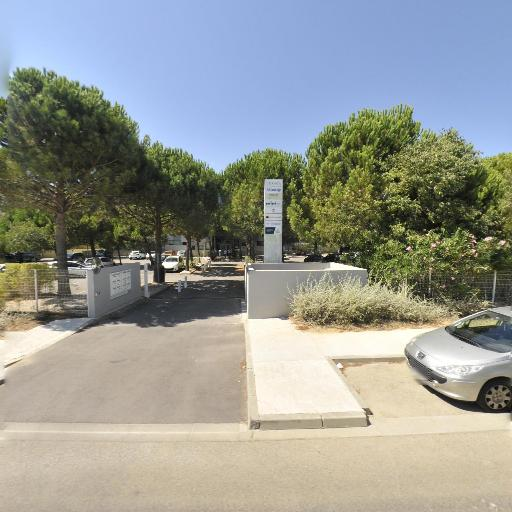 Randstad - Agence d'intérim - Montpellier